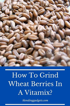 grinding wheat berries in a Vitamix