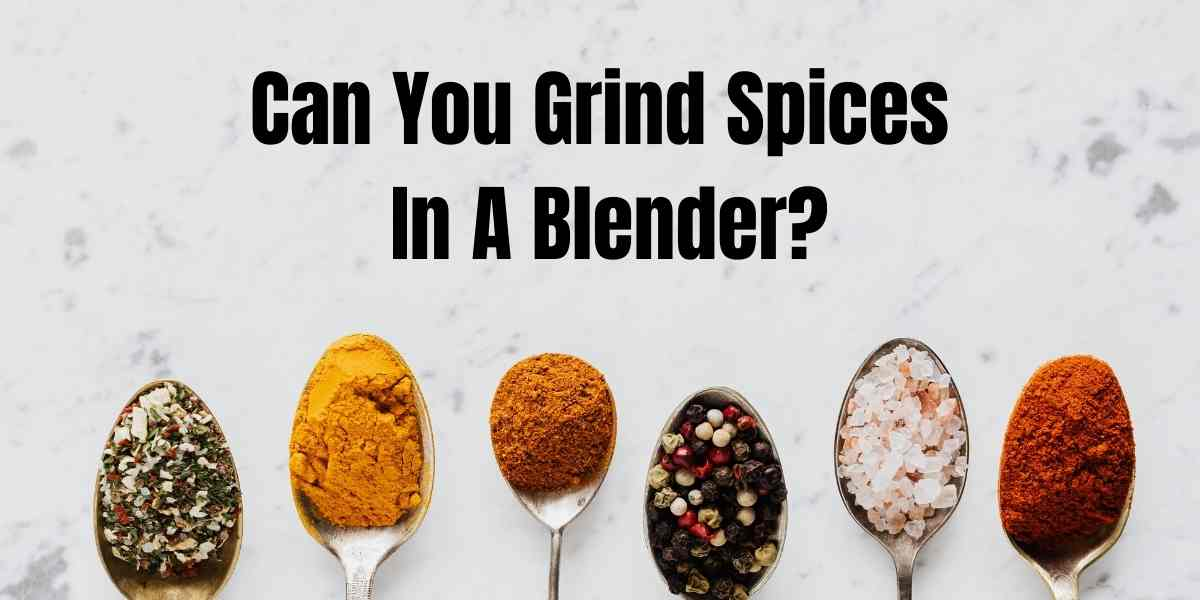 picture with spices and text asking a question of whether youc an use blender for dry spices